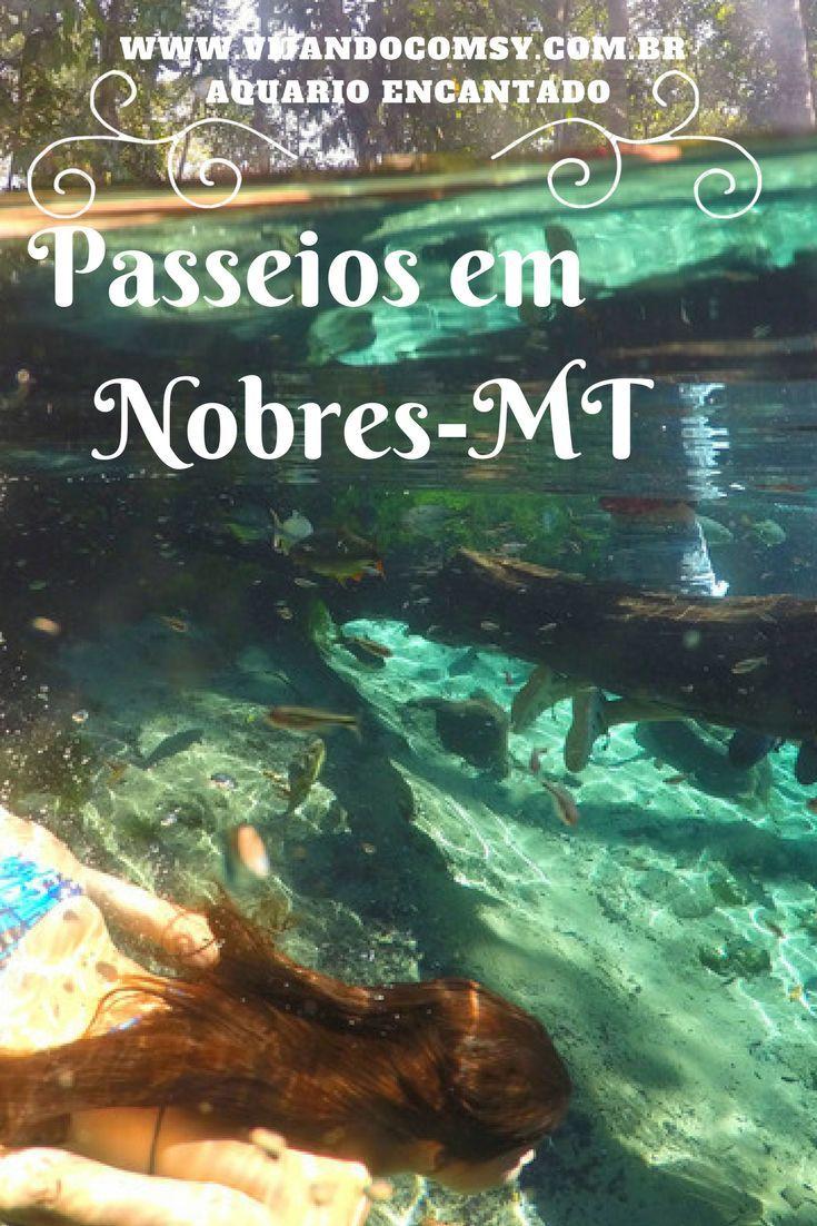 Conheça  os melhores passeios em Nobres-Mt . Saiba mais em www.viajandocomsy.com.br