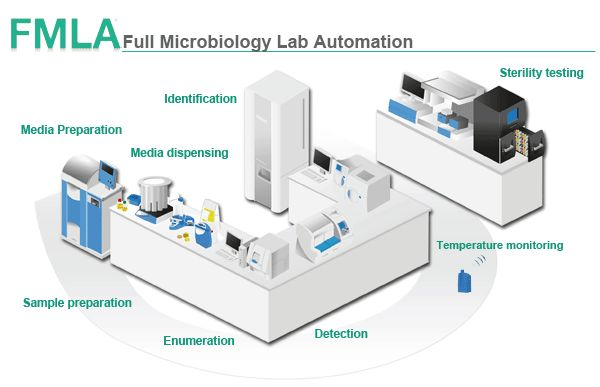 Food Microbiology And Safety