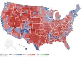 political voters map