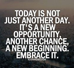 Opportunities for a new beginning are looking at you every day with daily quotes