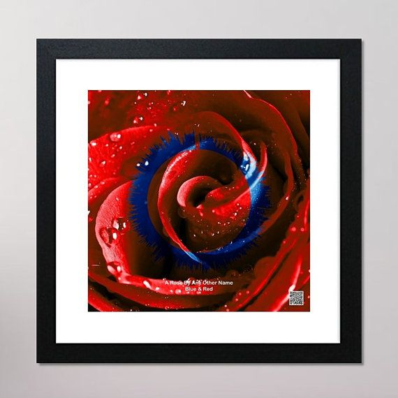 A Rose By Any Other Name Circular Sound Wave Framed Print With Contactless Playback Option 440mm x 440mm, Red & Blue