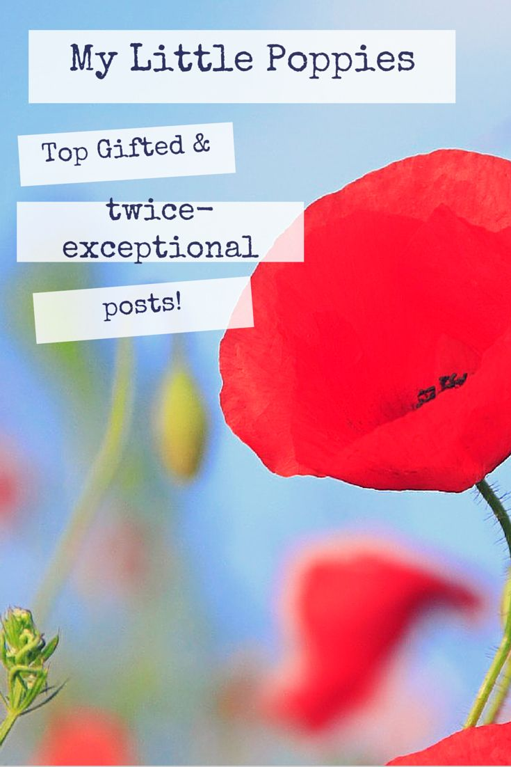 The readers' favorite posts on gifted and twice-exceptional (2e) children from My Little Poppies.