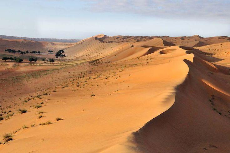 Als ze uit het labyrint ontsnappen komen ze terecht in een woestijn .