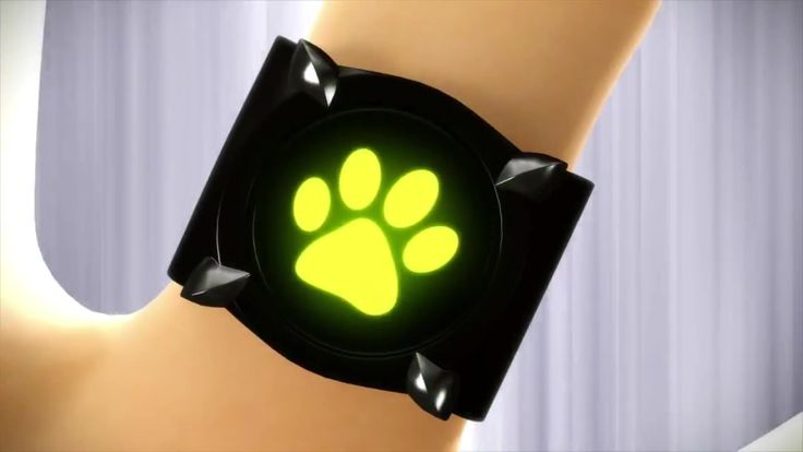 Close up reference picture of Chat Noir's ring
