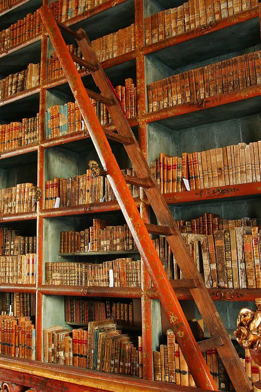 """Biblioteca Joanina"" en Coimbra, Portugal. Photo: Miguel Costa"