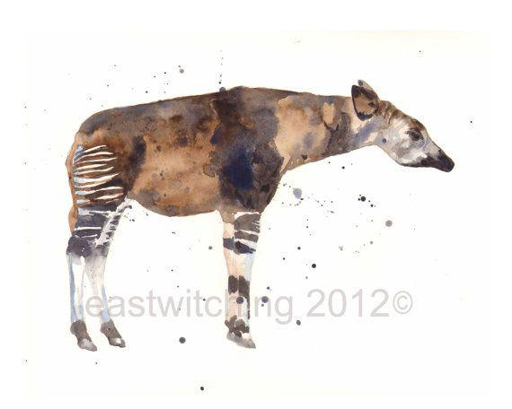 Okapi essay
