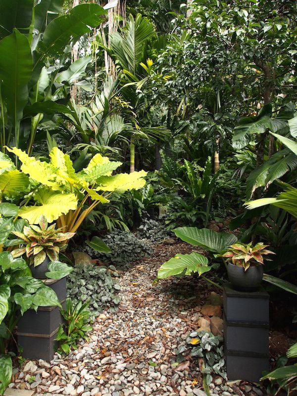 Die besten 25+ tropischer Patio Ideen auf Pinterest Dekorative - tropische pflanzen im garten