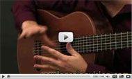 Flamenco Guitar Lessons- Adam Del Monte