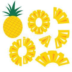 Pineapple fruit slices set icon vector illustration icon isolate