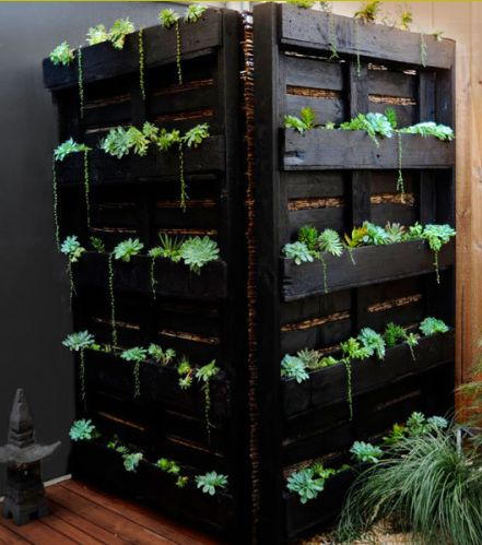 Vertical garden to hide air conditioner