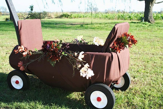 Wagon Idea