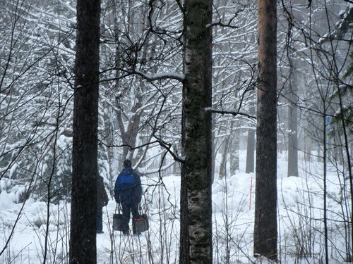 Walking, #winter, photo by Taina Tervonen