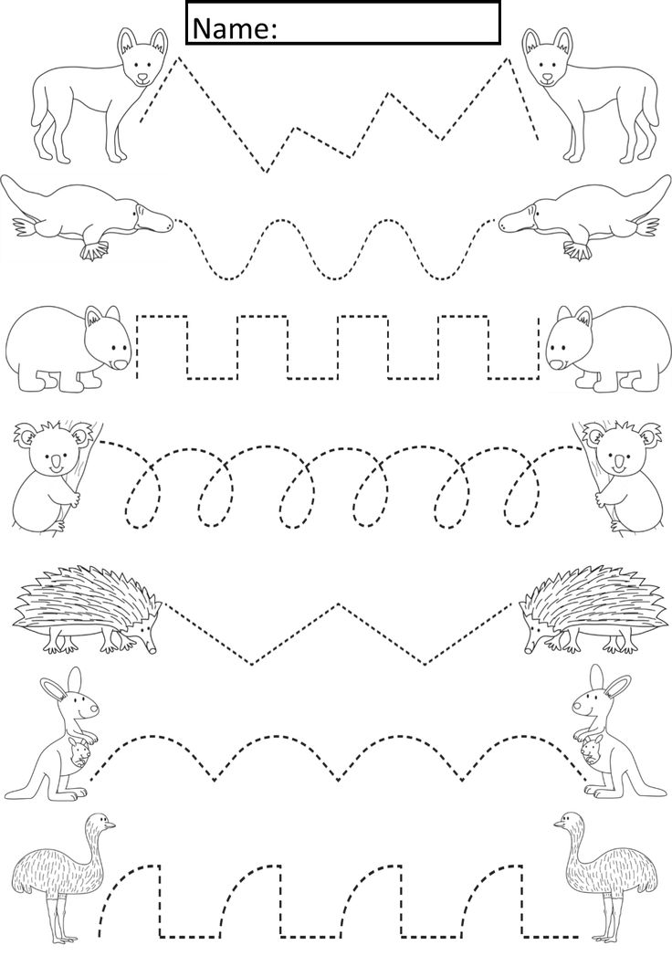 Australian Animals Tracing Lines Activity For Early Years ...