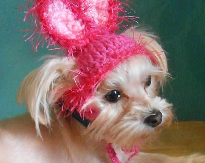 Hot Pink Dog Easter Bunny Ears, Bunny Hat For Cat, Pet Bunny Ears, Crocheted Rabbit Ears Hat For Cat, Easter Cat Hat