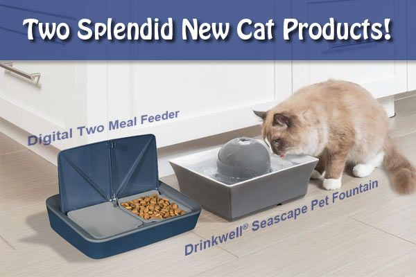 Click on Feeder or the Fountain for more info...