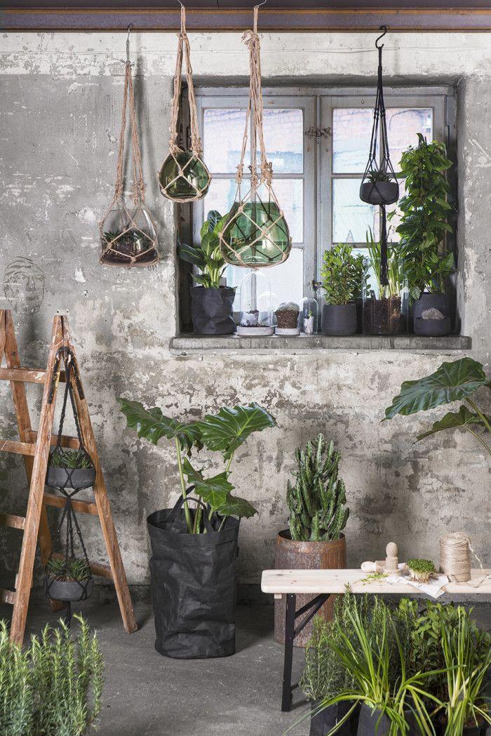 Die besten 25+ Grünes granit Ideen auf Pinterest Arten von - indoor garten wohlfuhloase wohnung begrunen