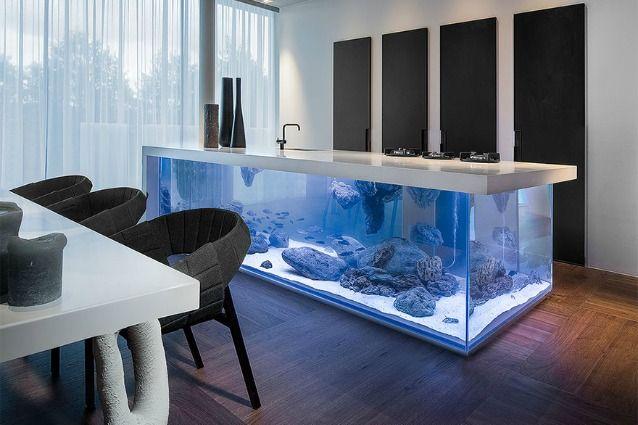 Cucinare o fare i piatti immersi nella barriera corallina da oggi si può grazie a Ocean Keuken, la prima cucina che ha come base un gigantesco acquario.