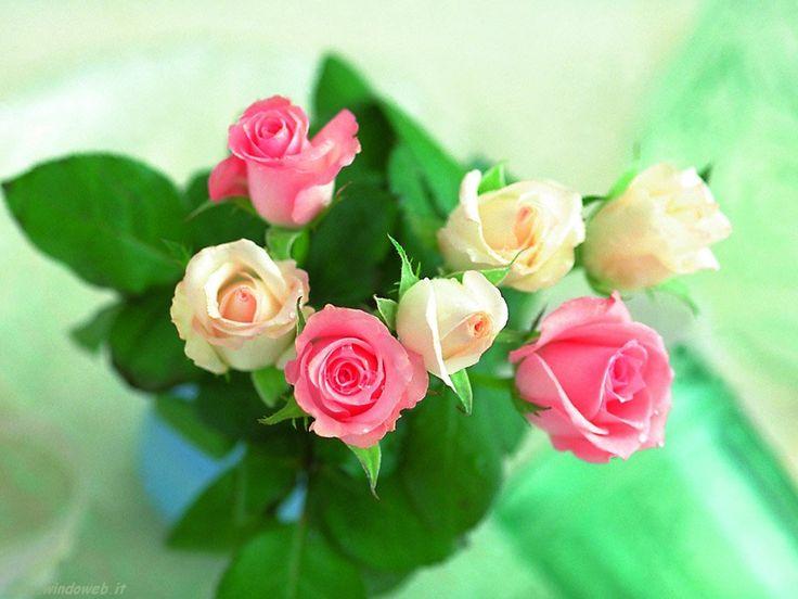 un mazzo di rose gialle e rosa