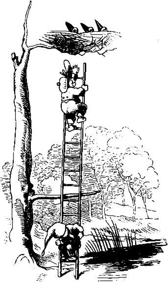Das Rabennest - Wilhelm Busch
