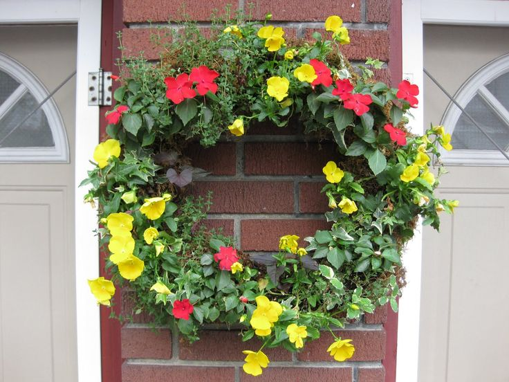Living Wreath  Ivy, Pansies, Potato Vine Thyme, Mint, Petunias, Bacopa etc - Let the Imagination Run Free !
