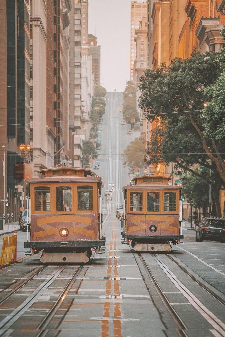 15 Lustige Erlebnisse Die Sie In San Francisco Haben Mussen Gepackliste Gepacklisteurlaub Urlaub In 2020 Kalifornien Reise Reisen Reisefotografie