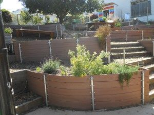 Curvy raised beds made with recycled plastic lumber and reinforced with galvanized fence posts turn a steep hillside into a lush garden classroom