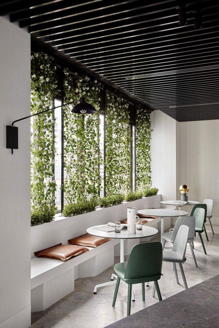 Best 25 Green office ideas on Pinterest Apartment plants