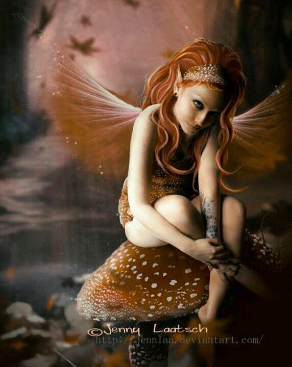 Thoughts...#fantasy #fairy #faerie #mushroom #art