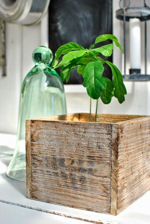 ekplanta glaskupa diy caisse en bois caisse pommes apple crate pinterest. Black Bedroom Furniture Sets. Home Design Ideas