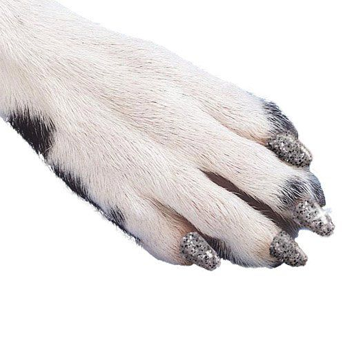 Soft Claws Dog and Cat Nail Caps Take Home Kit, X-Large, Sparkle Silver ** Click image for more details.