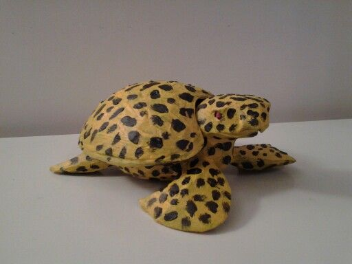 Tartaruga Ghepardata