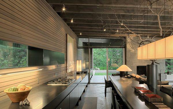 The Urban Cabin -- a project developed by the architectural studio, Suyama Peterson Deguchi in Washington.