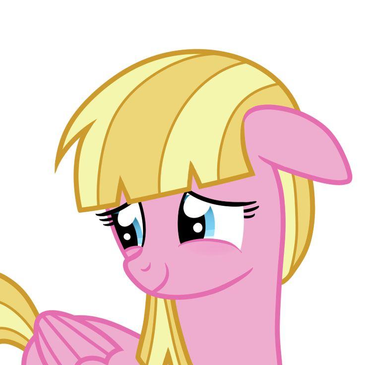 32 Best Pink Ponies Images On Pinterest