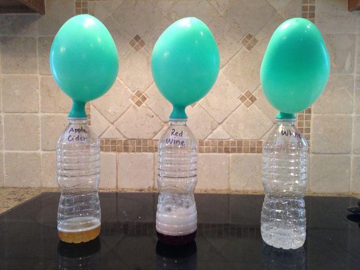 Los mejores y más fáciles experimentos para feria de ciencias para los estudiantes de cuarto grado de 10 años de edad