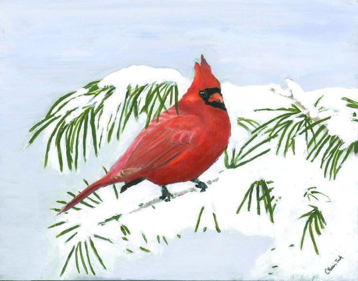 1912 Best Cardinals Images On Pinterest Cardinals Barn