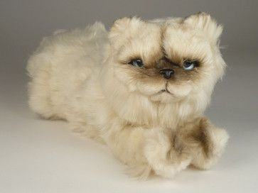 "Approximate Size: 15.7"" Himalayan Persian Cat If this item is not in stock, it…"