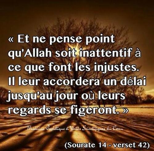 Langage…..Spirituelle…..Par les Versets du Saint Coran>Al-Qur'an Al-Karim