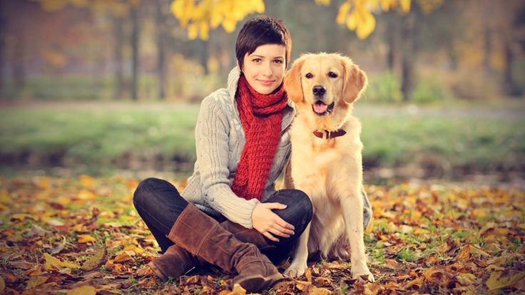 Cara Melatih Anak Anjing di Rumah