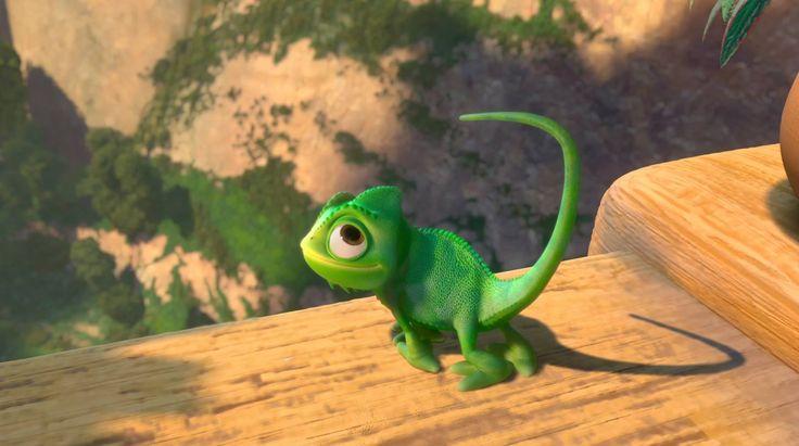 chameleon z Na vlásku