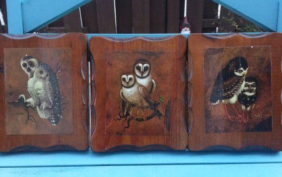 Adorabile gufo stampe su legno - Vintage, rustico, appeso a parete, illustrazioni, anni ' 70