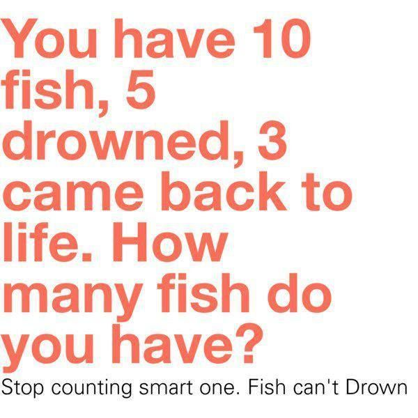 46 best ellen jokes more images on pinterest cheesy for Can fish drown