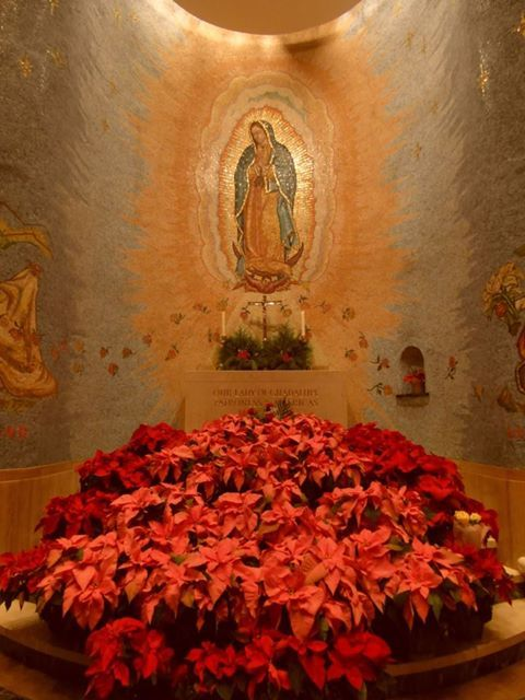 Basilica of the National Shrine of the Immaculate Conception - flowers for Our Lady of Guadalupe