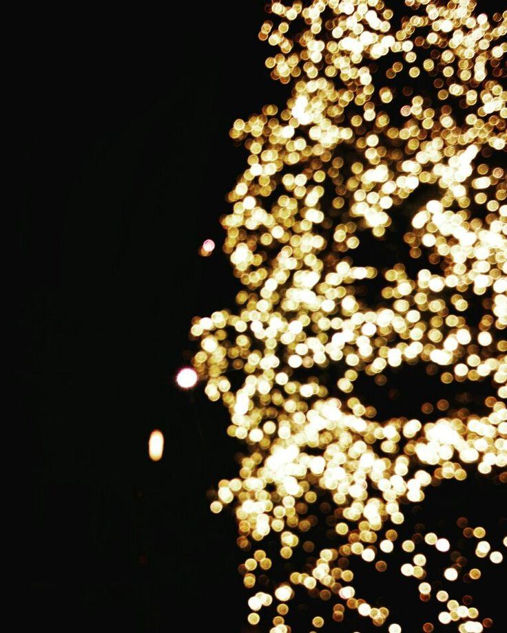 Love this lightened Christmas tree :)