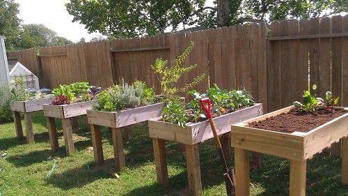 Garden Boxes... Cute idea!