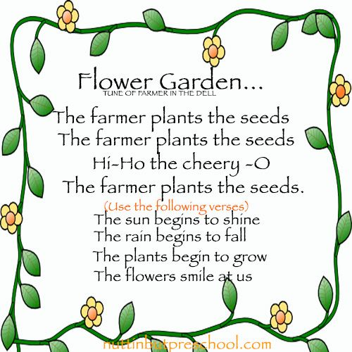 Flower Begins To Grow Preschool Childrens Song Growing Seeds Gardening Theme Pinterest Songs And Garden