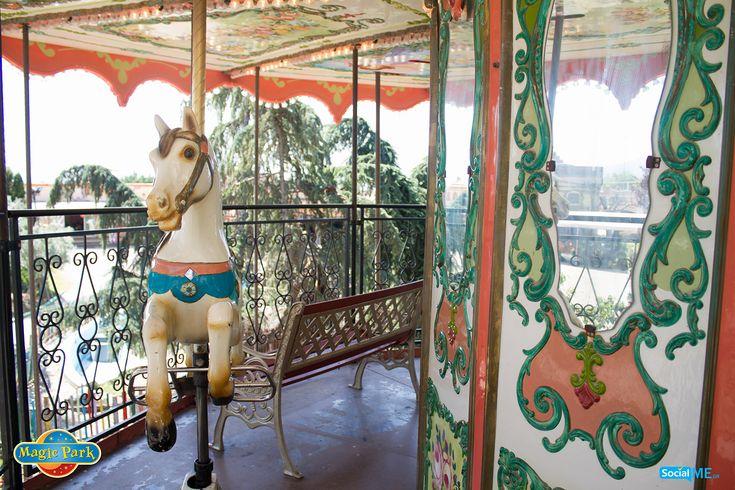 Ένα ναζιάρικο αλογάκι, ποζάρει όλο χάρη για αυτή τη φωτό! Εσύ, μπορείς να αντισταθείς σε μια βόλτα μαζί του;