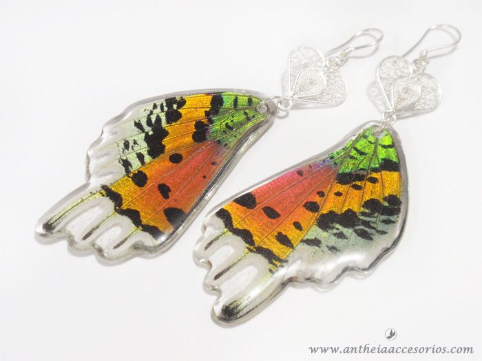 Ref: A2 - ARETE FILIGRANA MARIPOSA 1 Aretes con alas de mariposas recicladas. Real butterfly wing earrings! Cruelty free jewelry. All of our butterflies come from certified breeders, no butterfly has been harmed to make our jewelry. By supporting legal certified breeder business all over the world, you are supporting and helping the conservation of our ecosystems, on average, for each butterfly we use in our products, two have been released to the wild by our breeders!