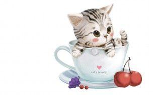 обои для рабочего стола 1680x1050 рисованные, животные, коты, чашка, котенок