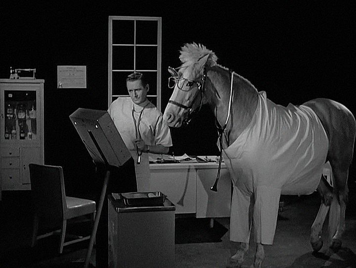 Mister Ed, Season 3, Episode 25 Doctor Ed (31 Mar. 1963)  Alan Young, Edna Skinner, Larry Keating, Leon Ames,