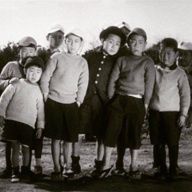 """Um viva a minha ignorância, presunção e eurocentrismo! E que não apareçam mais por aqui. """"Umarete wa mika keredo"""" ou """"Eu nasci, mas..."""" - Filme mudo japonês protagonizado por crianças?! Por essa definitivamente eu não esperava. Fofo é pouco, muito pouco pra descrever. E tal como Chaplin comovente! #cinejapão #osmelhoresfilmesdomundo #temquever #cinéfilaindica"""